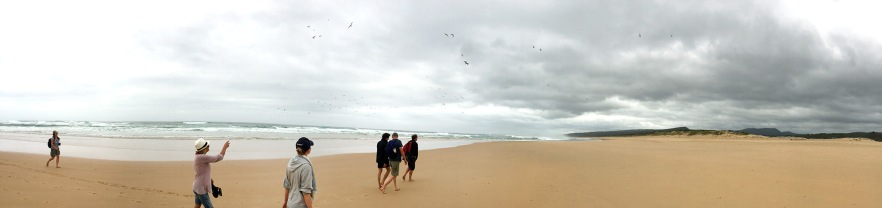 Beach Walk Panorama